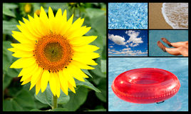 Collage of summer pictures royalty free stock image