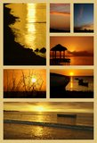 Tropical sunset collage Royalty Free Stock Image