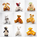 Collage Teddy bears and friends. On a white background Stock Images