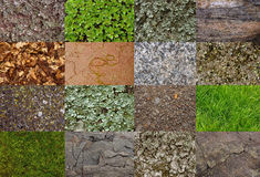 Collage background with natural textures from forest and mountains: grass, stone, moss, leaves Royalty Free Stock Photo