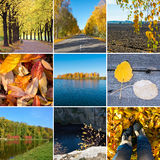 Collage on the theme of autumn. Stock Photography