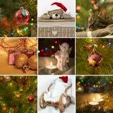 Collage on the theme of Christmas: Christmas toys, Christmas tre Royalty Free Stock Image
