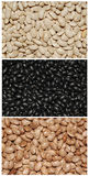 Collage of Three Different Types of Dry Beans Royalty Free Stock Images