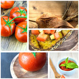 Collage tomatoes Royalty Free Stock Photo