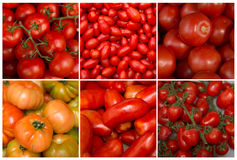 Collage of tomatoes Stock Image