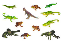 Collage of toy animals isolated on white background Royalty Free Stock Photos