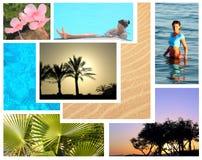Collage tropical hermoso de los tiros del centro turístico fotografía de archivo