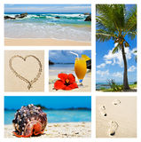 Collage of tropical island scenes Stock Photos