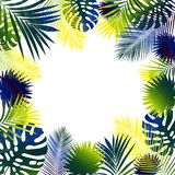 Collage of tropical leaves. White background stock illustration