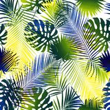 Collage of tropical leaves. White background royalty free illustration