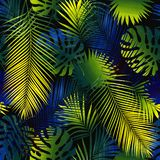 Collage of tropical leaves. Collage of stains. vector illustration