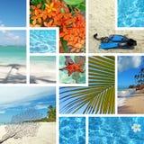 Collage tropical. Recorrido exótico. Foto de archivo libre de regalías