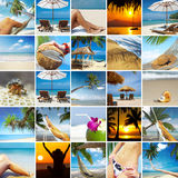 Collage tropicale Fotografia Stock