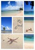 Collage tropicale della spiaggia Fotografie Stock Libere da Diritti
