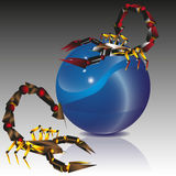 Collage two scorpion and blue ball Royalty Free Stock Photography