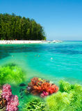 Collage of underwater coral reef and with green island on the horizon Royalty Free Stock Photo