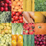 Collage of untreated raw plant foods. Natural food pattern. Royalty Free Stock Images