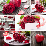 Collage valentines day. With roses Royalty Free Stock Photography
