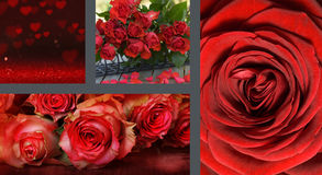 Collage Valentines day Royalty Free Stock Photos