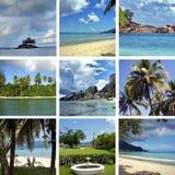 Collage van beelden Royalty-vrije Stock Foto