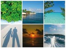 Collage van de beelden van de Maldiven van het de zomerstrand - aard en reisachtergrond Royalty-vrije Stock Fotografie