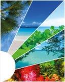 Collage van de beelden van het de zomerstrand - aard en reisachtergrond Stock Afbeelding