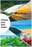 Collage van de beelden van het de zomerstrand - aard en reisachtergrond Stock Foto's