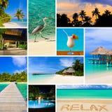 Collage van de Maldiven van het de zomerstrand beelden Royalty-vrije Stock Foto