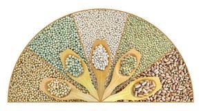Collage van droge linzen, erwten, sojabonen, bonen Royalty-vrije Stock Foto's