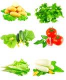 Collage van groenten op witte achtergrond. Stock Fotografie