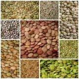 Collage van het linzen de gezonde voedsel royalty-vrije stock afbeeldingen
