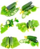 Collage van Komkommers op witte achtergrond. Royalty-vrije Stock Afbeelding