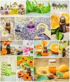 Collage van kruiden en etherische olie Stock Afbeelding