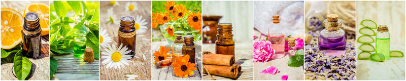 Collage van kruiden en etherische olie Royalty-vrije Stock Fotografie