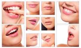 Collage van mooie lippen Stock Foto's