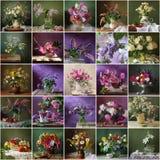 Collage van nog lifes met boeketten De achtergrond van de bloem Packi Stock Fotografie
