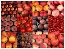 Collage van rode vruchten Stock Foto