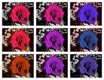 Collage van rozen stock illustratie