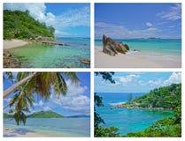 Collage van Tropische Landschappen, Seychellen Stock Afbeelding