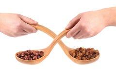 Collage van twee lepels met noten en rozijnen Royalty-vrije Stock Fotografie