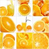 Collage van verschillende oranje vruchten Stock Fotografie