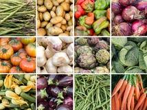 Collage van verse groenten Stock Afbeelding