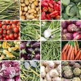 Collage van 16 verse groenten Royalty-vrije Stock Afbeeldingen