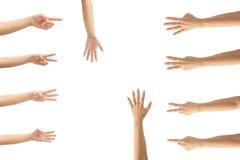 Collage van vrouwenhanden op witte achtergronden Stock Afbeelding