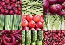 Collage van vruchten en groenten Stock Afbeeldingen