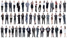 Collage of a variety of business people standing in a row. Isolated on white background stock photos