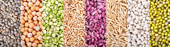 Collage of various cereals, seeds, beans and grains Stock Photo