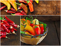 Collage of various chilli peppers Royalty Free Stock Photo