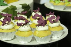 Collage of various cupcakes: vanilla. In decorative cups Stock Image