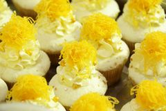Collage of various cupcakes: vanilla in decorative cup. S Stock Photos